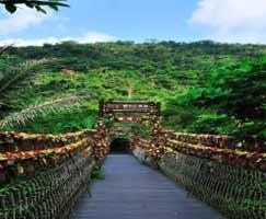 Honeymoon Tour To Hong Kong