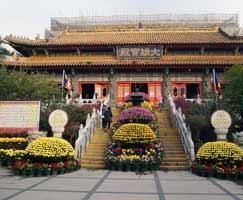 Hong Kong Honeymoon Tour Package